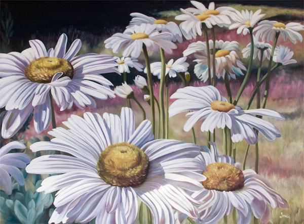 Field of Daisies by Saskia