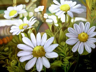 Barrel of Daisies